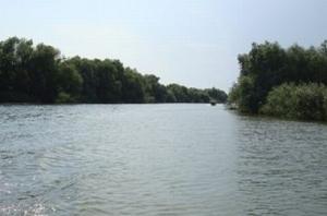 Дунай поднялся - и снова упал