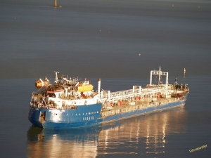 Средний Дунай грозит экологической катастрофой