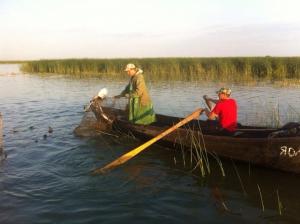 Сколько рыбы из реки наловили рыбаки?