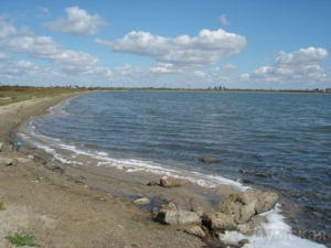 Определились: озеро Сасык вернут морю, но дамбу разрушать не будут