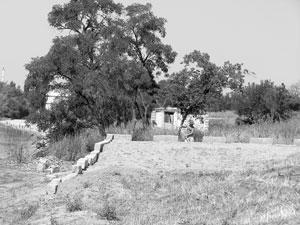 """Открытое письмо членам Благотворительного фонда """"Крепость Измаил"""""""