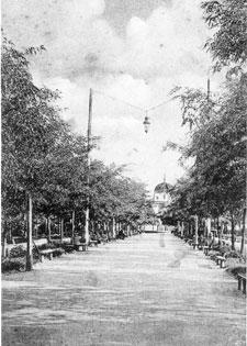 Бульвар на проспекте Суворова