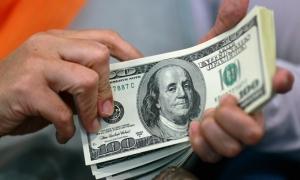Курс гривни от Минфина на следующий год: 24,1−24,4 за доллар