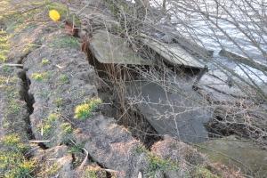 Дунайские воды грозятся поглотить остров Репида