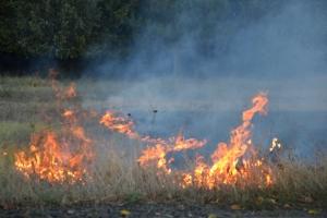 Измаильщина в огне и пепле