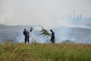 Фермеры продолжают поджигать поля
