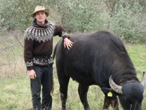 Придунайские буйволы: кино и немец