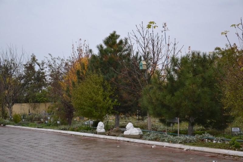 Дендрологическому парку в Ларжанке – 10 лет