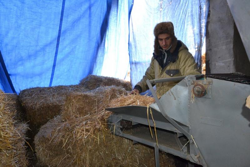 Топливные брикеты из соломы начали производить под Каменкой