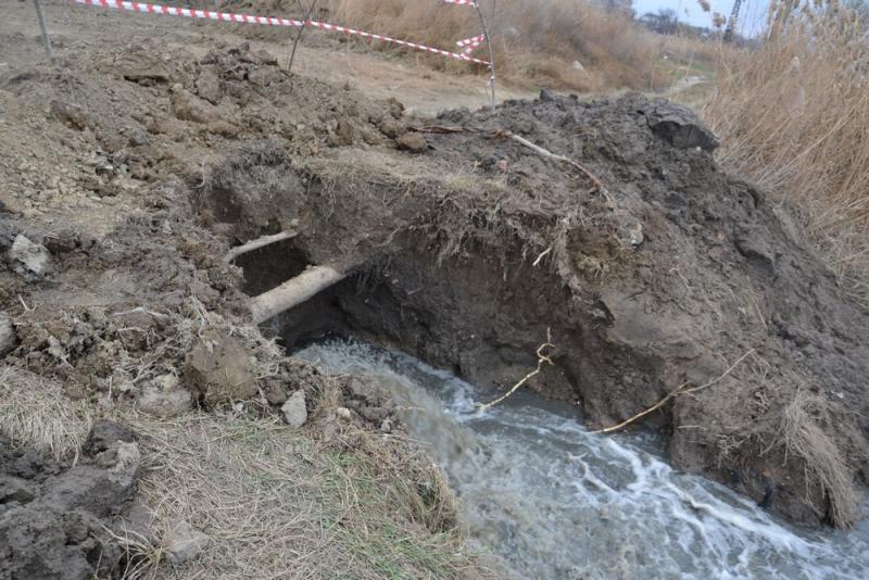 Лебяжье озеро: катастрофа продолжается