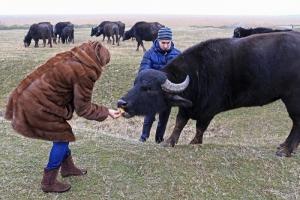 В Придунавье весной откроется экологический парк