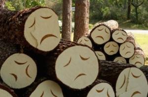 Чем дальше в газ, тем больше дров