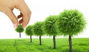 Март - пора озеленения и благоустройства