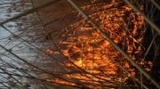 За Старой Некрасовкой горел камыш