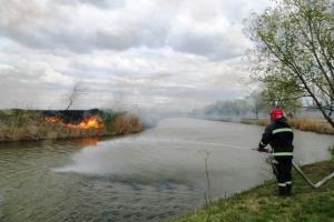 Гектар тростника сгорел на Лебяжьем озере