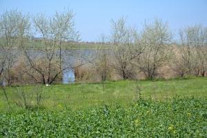 Озеро Сафьяны продолжает страдать от фермеров