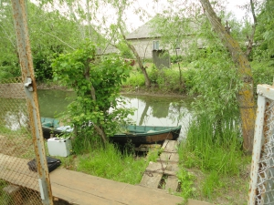 Жестоко, однако: вилковчанин убил веслом бабушку