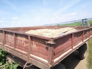 Пограничники Измаильского отряда остановили незаконную добычу песка под Рени