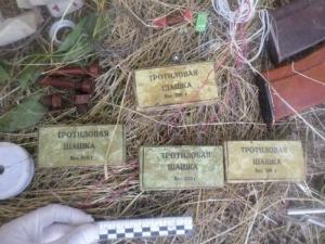 В Одесской области нашли сумку, начиненную взрывчаткой и боеприпасами