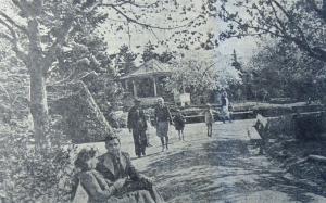 Из истории Городского сада