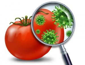 Предупредим пищевые отравления!