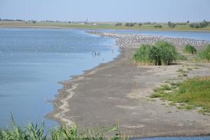 Жители Измаильщины намерены остановить процесс гибели придунайских озёр