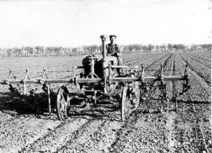 Засушливое лето 1945
