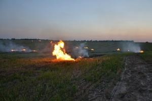 В районе зафиксировали, чьи поля горели этим летом