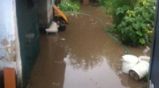 Разрушительное влияние балки Манкахиу: из-за проблем с ливнестоком в Старой Некрасовке разрушаются дома