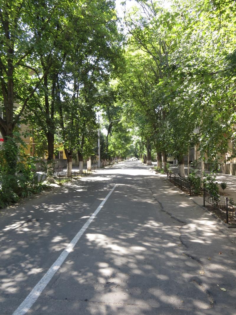 Сделаем улицу Кишинёвскую проездной!