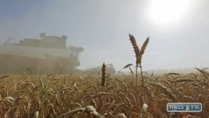 Полиция открыла более десяти дел по фактам рейдерского захвата урожая в Одесской области