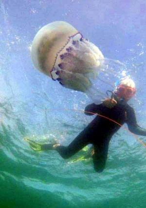 Фотосессия для медузы