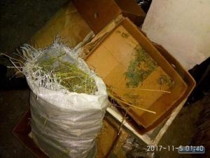 СБУ в Измаиле накрыла торговца оружием и наркотиками