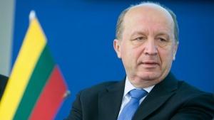 Литва призвала Венгрию прекратить угрозы в сторону Украины