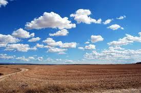 Госгеокадастр насчитал в Одесской области 50 тысяч гектаров «бесхозных» земель