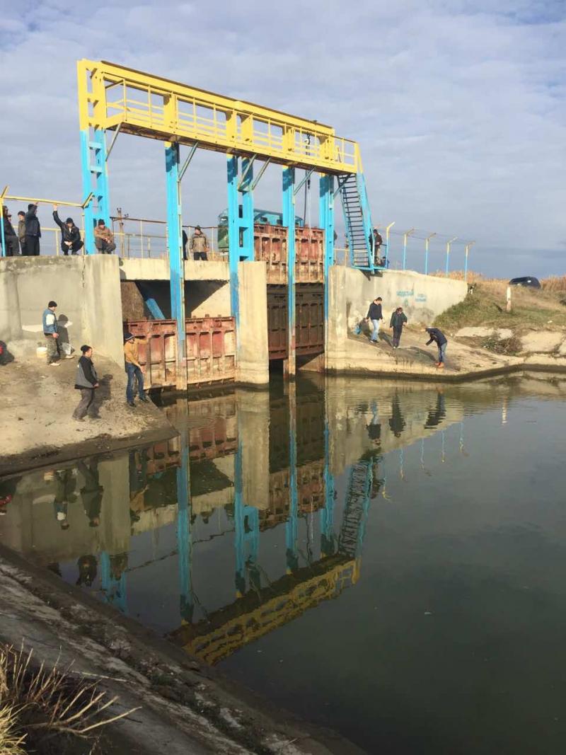Дунай поднимается – специалисты пытаются наполнить озёра водой