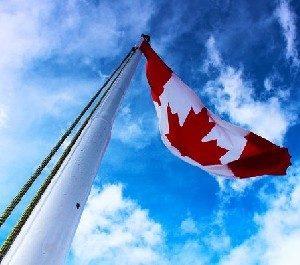 Канада разрешила экспортировать оружие в Украину