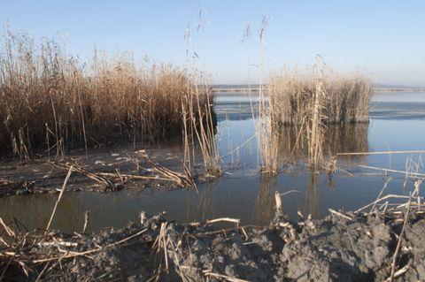 Канал Общественный: вода входит и … не выходит