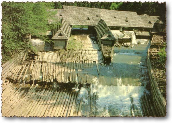 53,1 млн гривен на возобновление Музея леса и сплава на Чёрной реке выделило Министерство экологии Украины