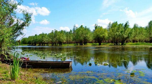 За спасение экосистемы Придунайских озер взялись серьёзно
