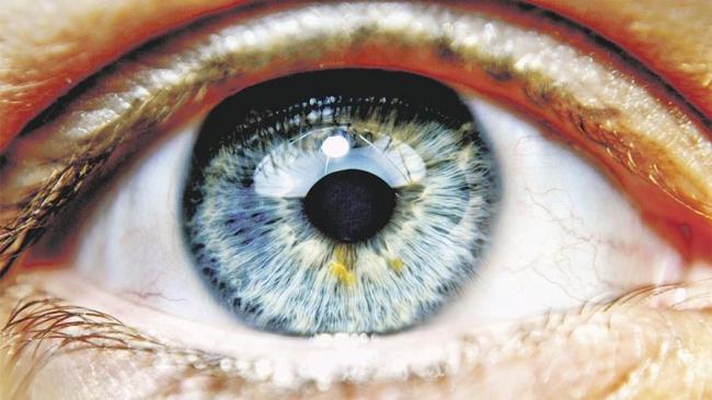 Генная инженерия возвратит полностью утраченное зрение