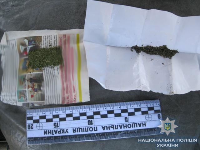 Работники патрульной полиции в Измаиле обнаружили очередного нарколюбителя