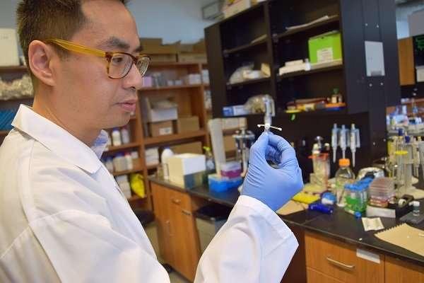 Создан специальный имплант для предотвращения ВИЧ-инфекции