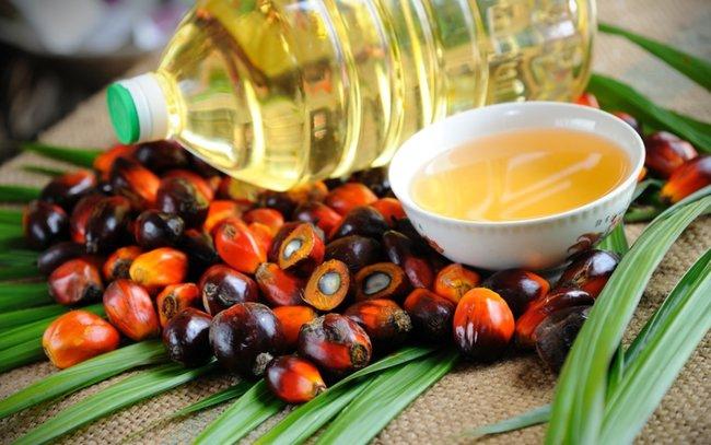 Нужен ли Украине запрет пальмового масла
