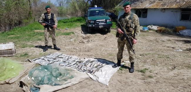 Пограничники задержали браконьеров, выловивших сельди на 28 тыс. грн