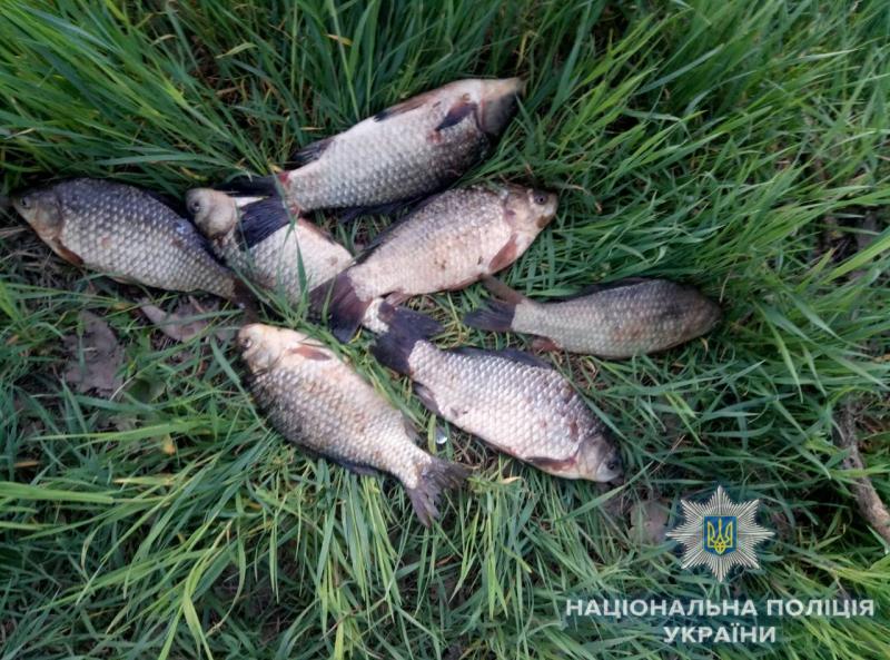 Измаильские полицейские пресекают факты незаконного вылова рыбы