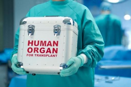 Чем грозит украинцам закон о трансплантации органов