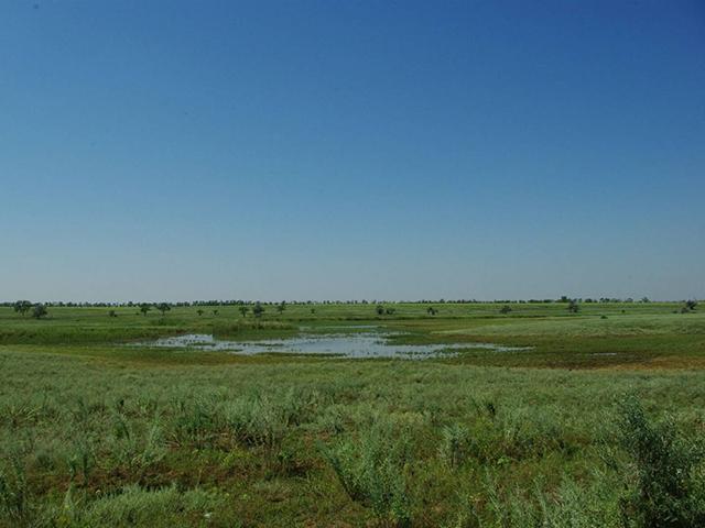 В Одесской области появится ещё один национальный природный парк