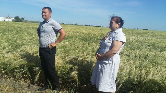 Килийский район одним из первых в Одесской области начал уборку урожая - 2018