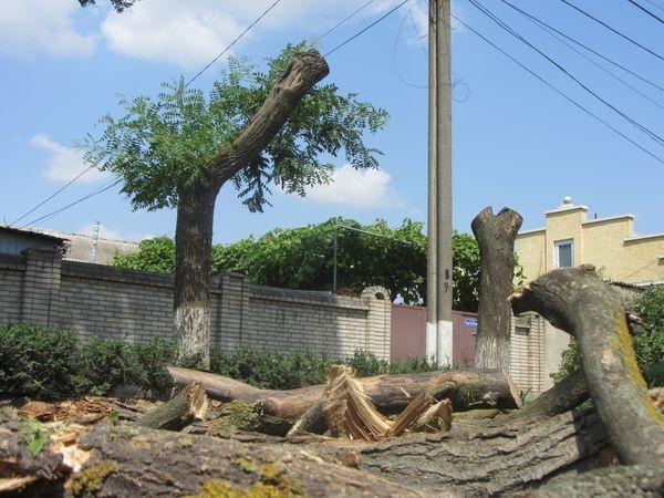 Измаильский экоцид